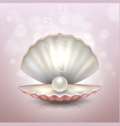 realistic beautiful natural open sea pearl shell vector image vector image