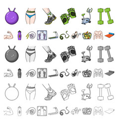 Fitness and attributes cartoon icons in set vector
