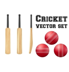 Traditional wood cricket bats and balls vector