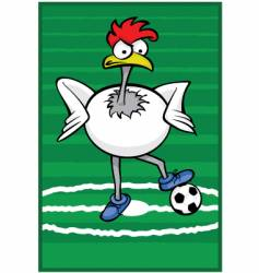 soccer rooster vector image