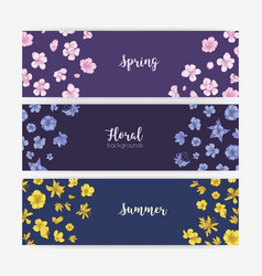 Bundle of floral banner templates with spring and vector