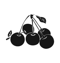 Five ripe cherries with leaf vector image