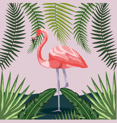 flamingo with branches leaves plants background vector image