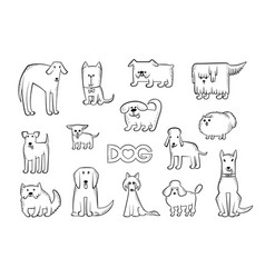 Set of different dog breeds funny vector