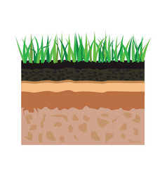 Soil layers with grass vector