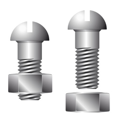 Screw with nut isolated on white background vector image