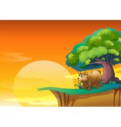 A bear near cliff vector