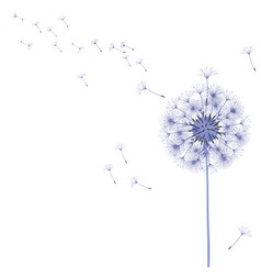 abstract background of a dandelion for design vector image