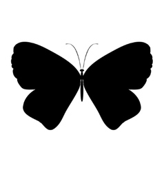 Black silhouette butterfly vector