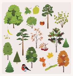Forest collection vector