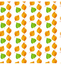 green orange autumn leaves white background vector image