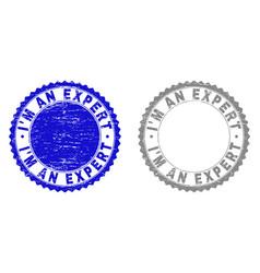 Grunge im an expert scratched stamp seals vector