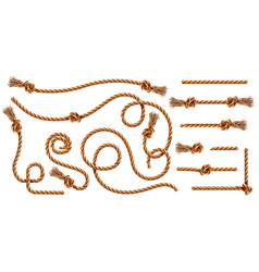 Knotted ropes with tassels or cords string knot vector
