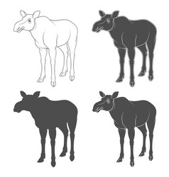 set of black and white images with a moose vector image