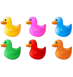 several colors rubber ducks on white background vector image