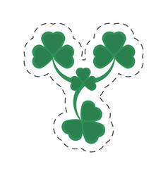 cartoon st patricks day clover symbol vector image