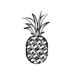 Blurred thick silhouette of pineapple fruit vector