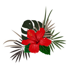 Bouquet composition with red hibiscus flower and vector
