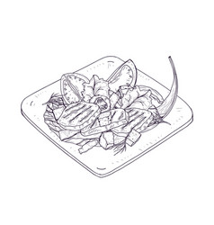 caesar salad on plate hand drawn with contour vector image