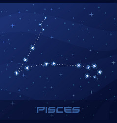 constellation pisces astrological sign vector image