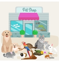 Pet shop accessories and vet store vector image