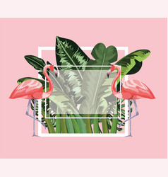 Square frame with flamingos and leaves background vector
