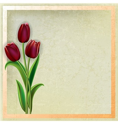 abstract beige grunge background with red tulips vector image