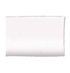 blank newspaper vector image vector image