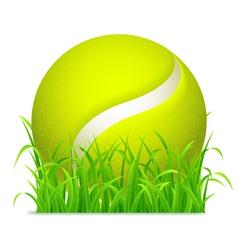 Tennis ball vector image vector image