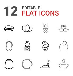 12 beautiful icons vector