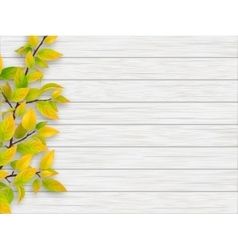 Autumn tree branch on white wooden background vector