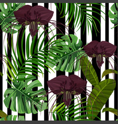 Exotic jungle backgroundwith monstera palm leaves vector