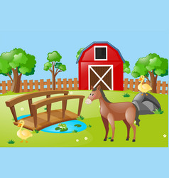 farm scene with horse and ducks vector image
