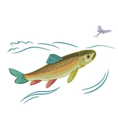 Fish caught ephemera vector