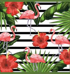 Flamingos with flowers and plants leaves vector
