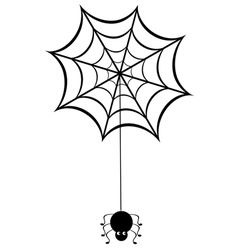 funny spider vector image