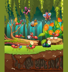 group insect in nature vector image