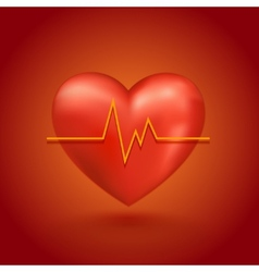 Healthy heart beat vector