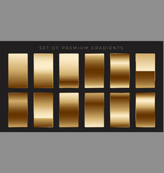 Shiny mettalic golden gradients collection vector