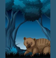 A quokka in dark forest vector