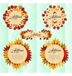 Autumn sale banner with colorful autumn leaves vector image