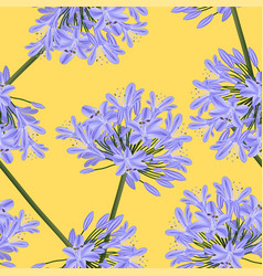 Blue purple agapanthus on yellow background vector