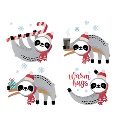 cute sloth bear animal set vector image