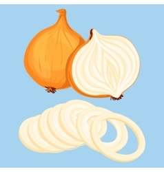 Fresh onion vector