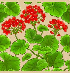 geranium branches pattern vector image
