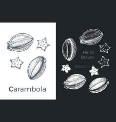 hand drawn carambola icons vector image
