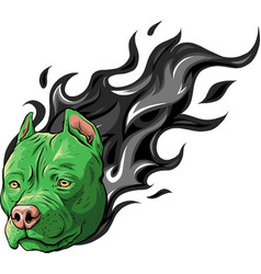 Head dog pitbull with flames vector