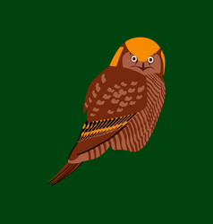 in flat style of owl vector image