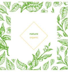 Template branch green organic vector