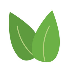 two leaves icon image vector image vector image
